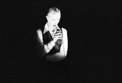 Photo noir et blanc de David Bowie en 1977 réalisé par le photographe Belge Paul Coerten issue de son livre Golden Years