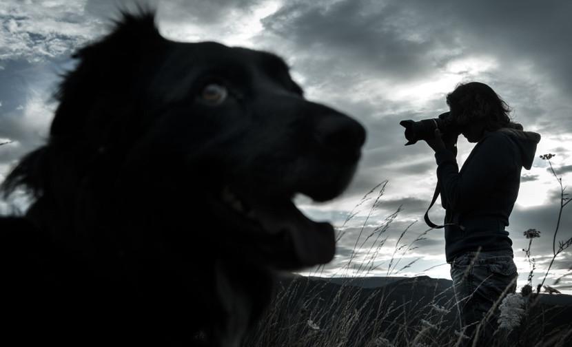 Photo d'un photographe à contre jour pour un concours photo