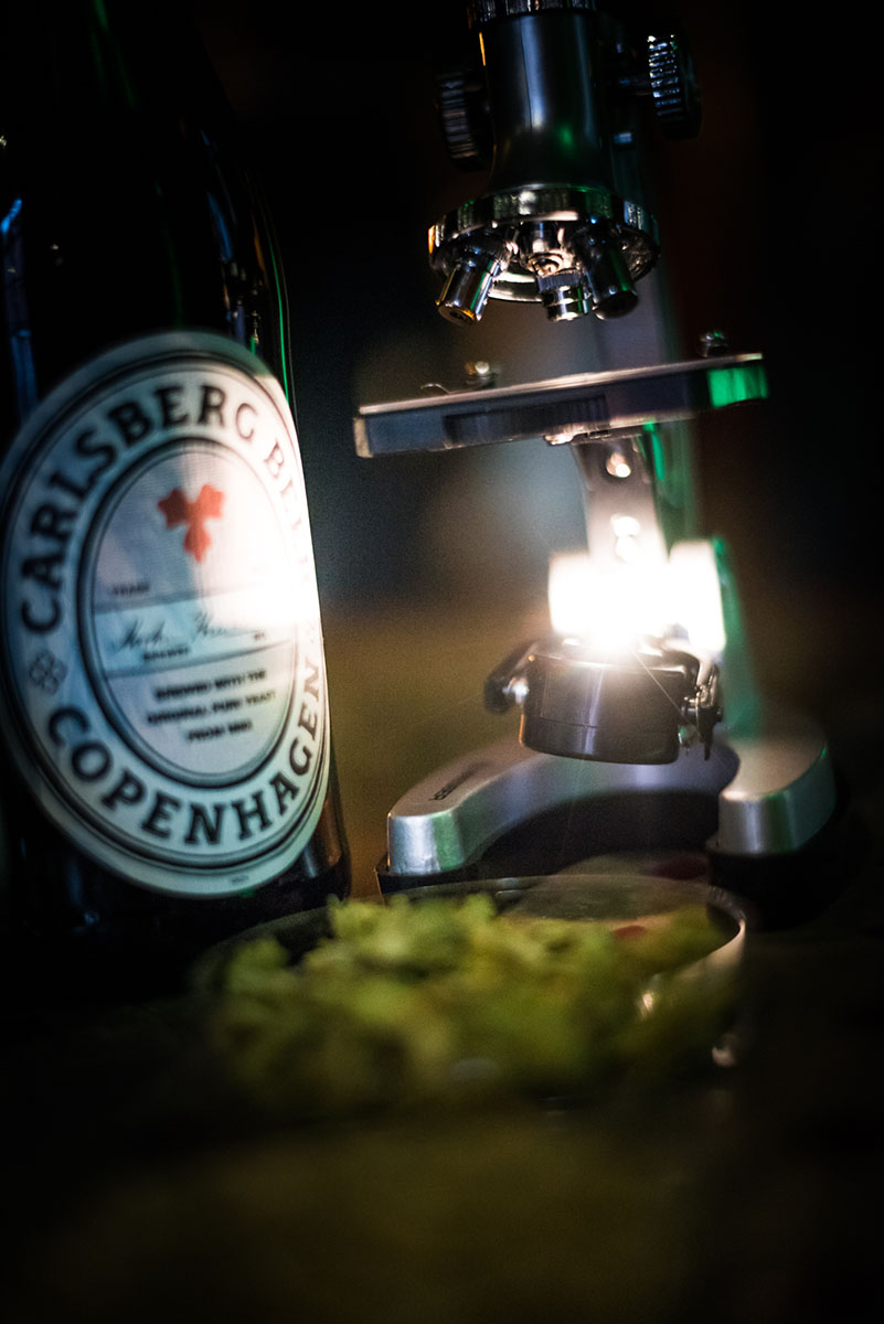 carlsberg-biere-rebrew-3